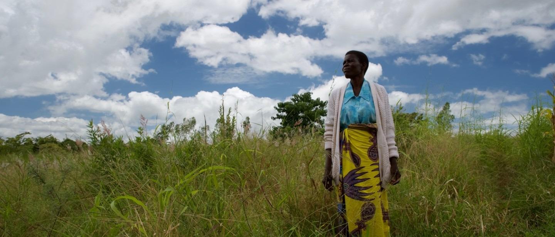 Cancer du col de l'utérus. Malawi.